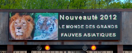 Ecran afficheur LED full color